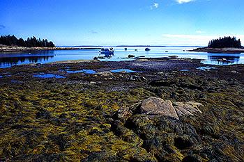 Deer Isle - Maine
