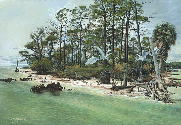Забытое побережье Флориды - Флорида /Florida's Forgotten Coast – Florida