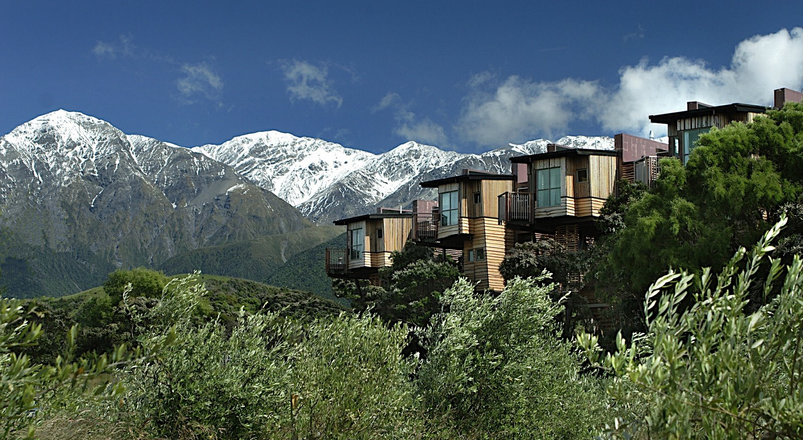 Hapuku Tree Houses,New Zealand