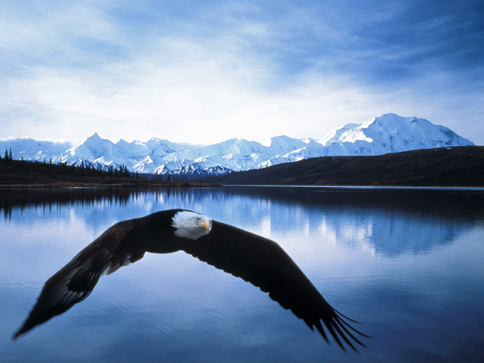 The Top 5 National Parks in Alaska