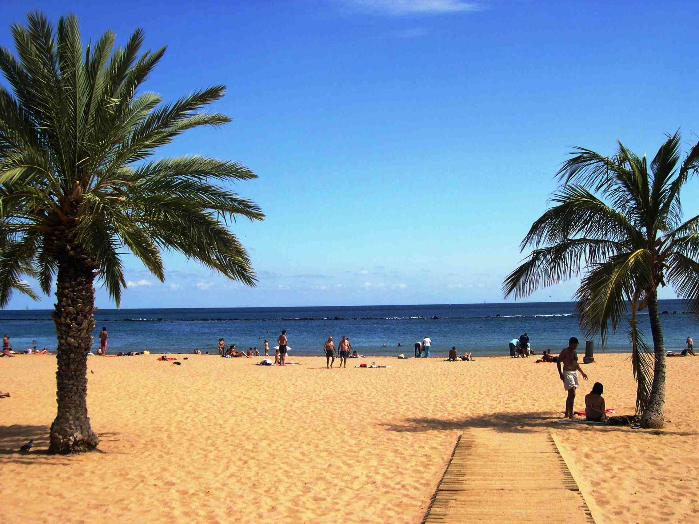 Tenerife for Nature Lovers