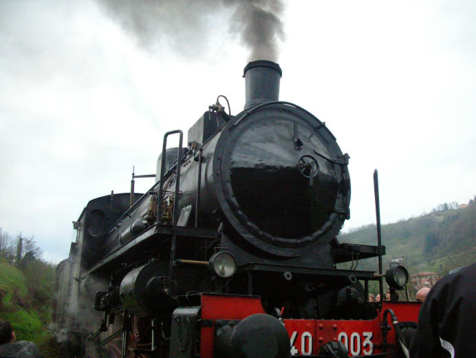 Trenonatura steam train