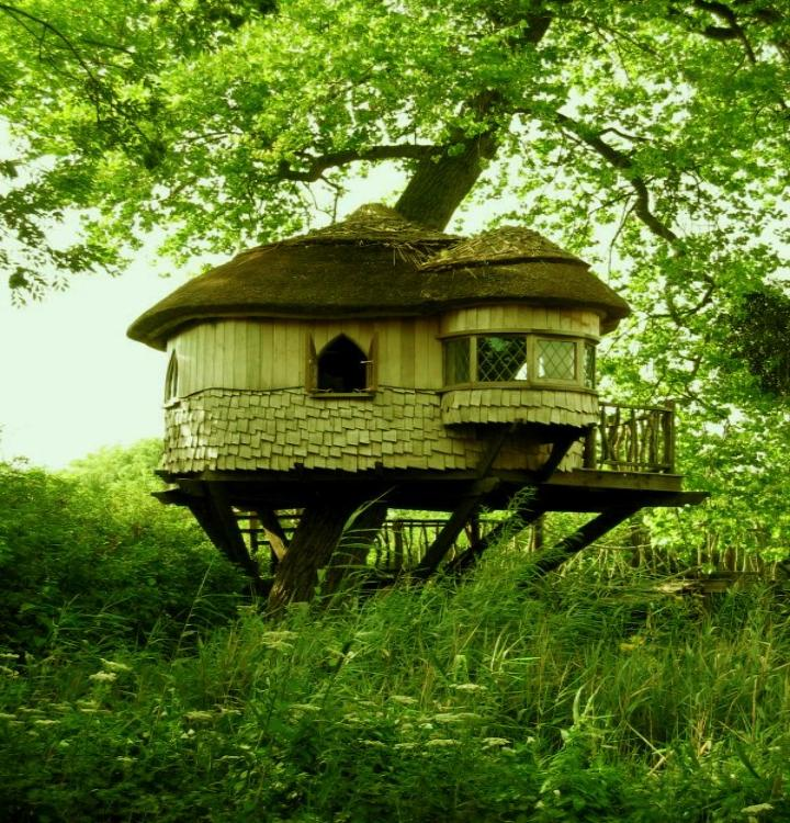 africa Tree-House