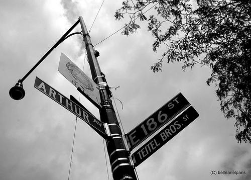 Arthur Avenue in New York