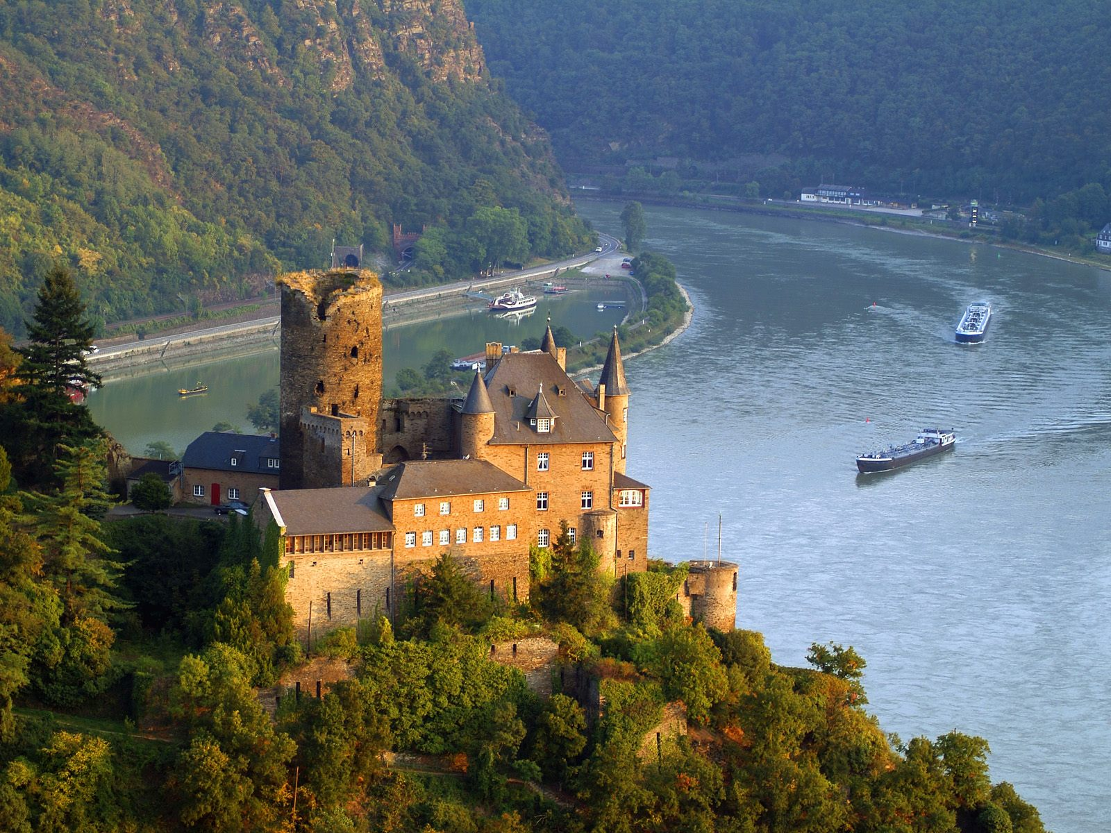 rhine river cruises
