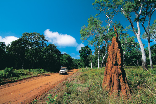 Hop on the top Queensland tours