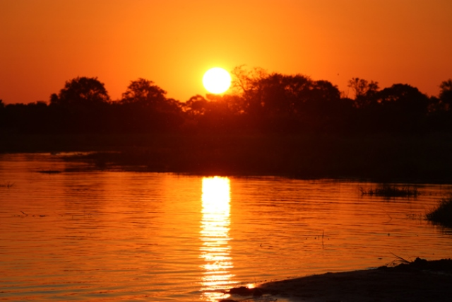 A Botswana Safari adventure