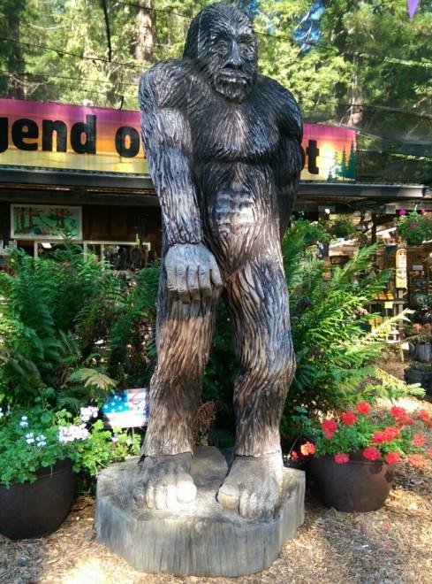 Carved Bigfoot at the Legend of Bigfoot shop.