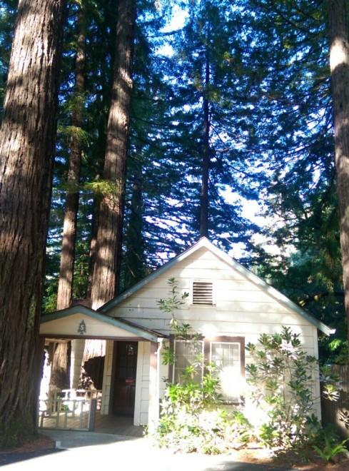 Cabin at Miranda Gardens
